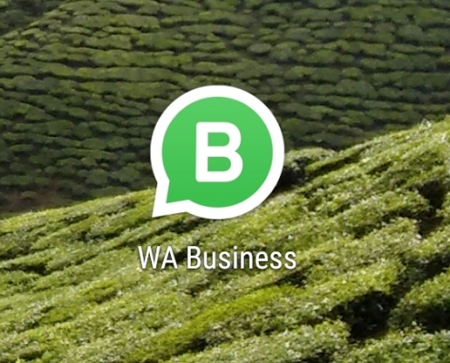 whatsapp business activeren